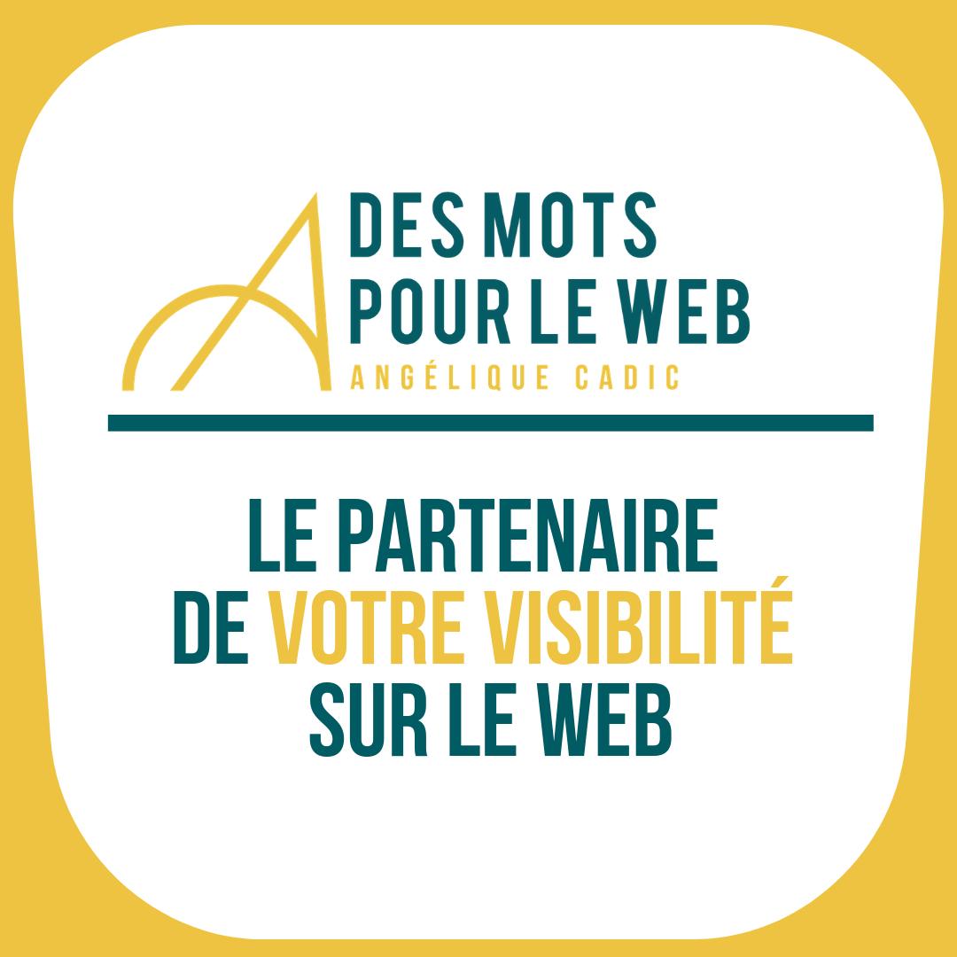 DMPW Partenaire visibilité web
