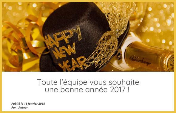 photo de blog bonne année 2017
