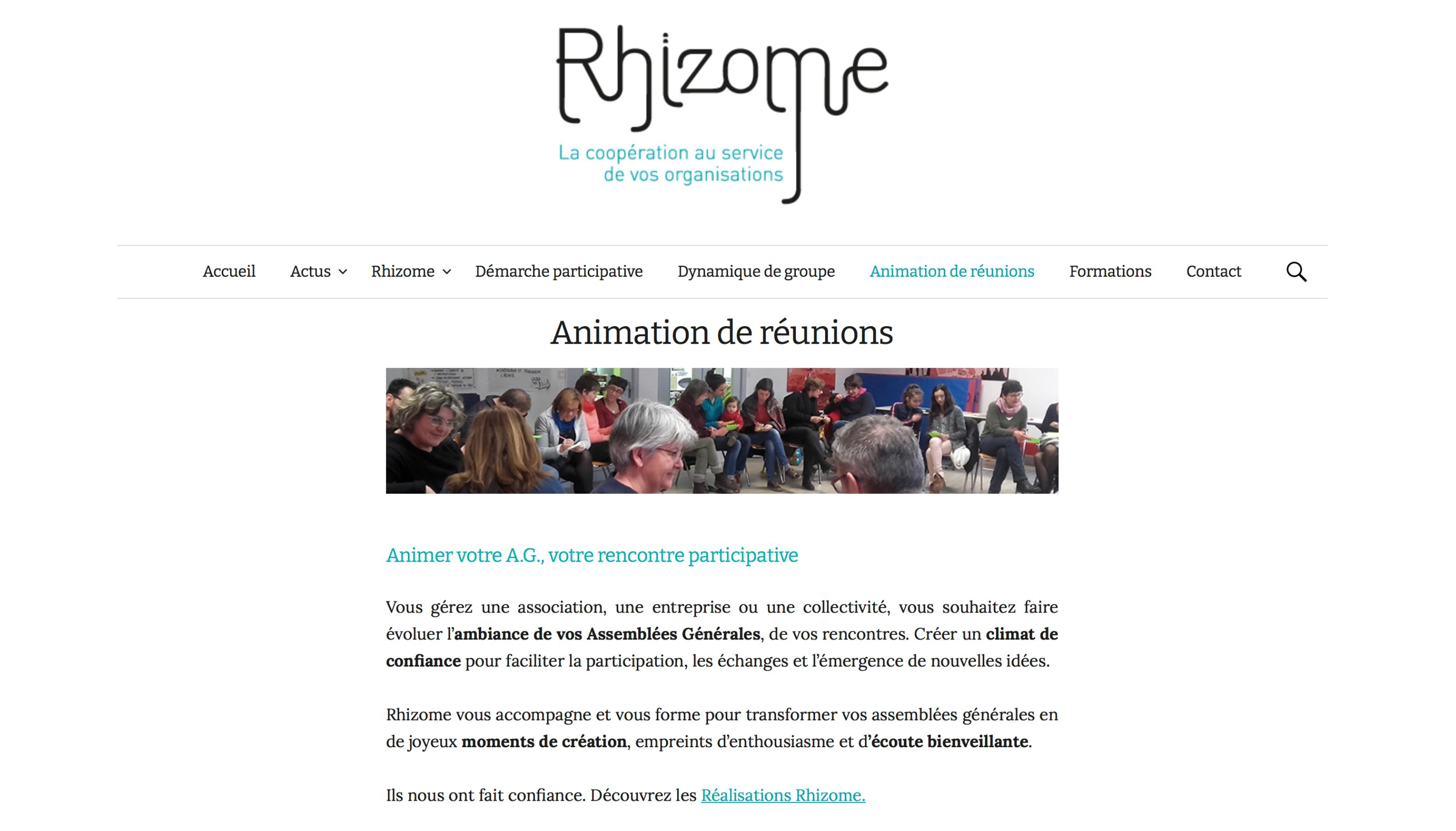 REDACTION CONTENU SITE WEB RHIZOME